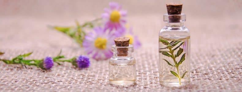 ätherische Öle - die geballte Kraft der Pflanzen